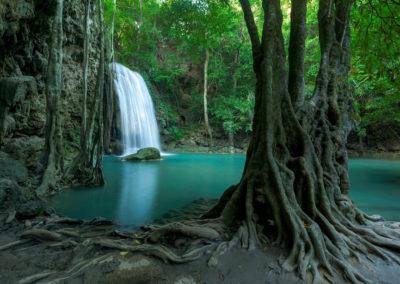 Mystical Gaia... Maui's healing essence